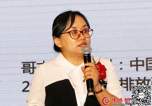 中國人民大學生態金融研究中心副主任、世界銀行綠色金融項目技術顧問 藍虹